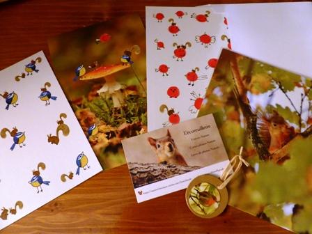 Cartes photos de Nature de l'Equreuillette (tout droit réservé)