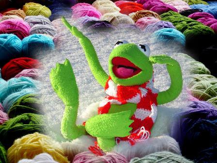 montage-grenouille-heureuse-dans-tricot