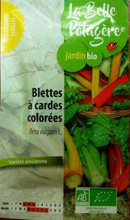 futures plantations de blettes colorées La belle potagère.JPG