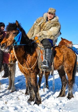 poney mongole neige.jpg